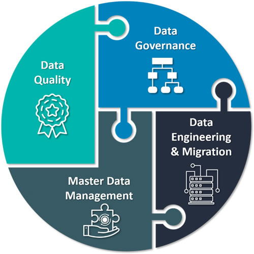 Data Quality Governance and Management